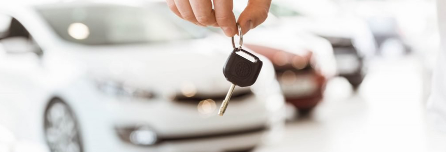 car work for you by renting
